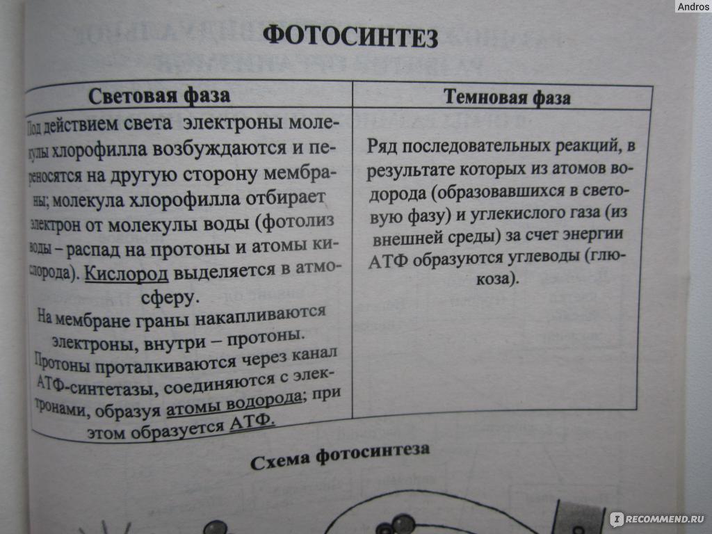 Онищенко. Биология. 5-11 класс. В таблицах и схемах. Справочник.