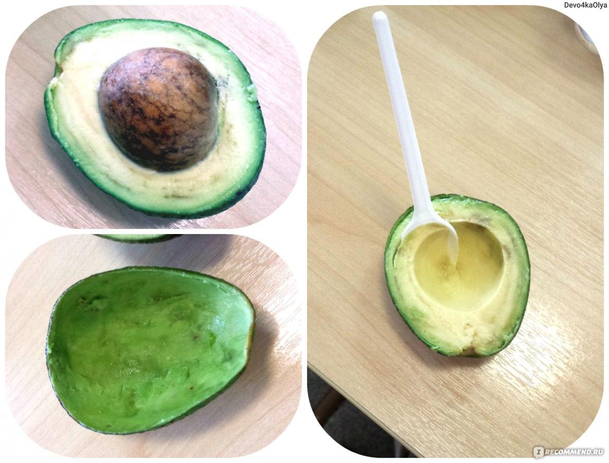 Как посадить авокадо из косточки в домашних условиях фото пошагово в