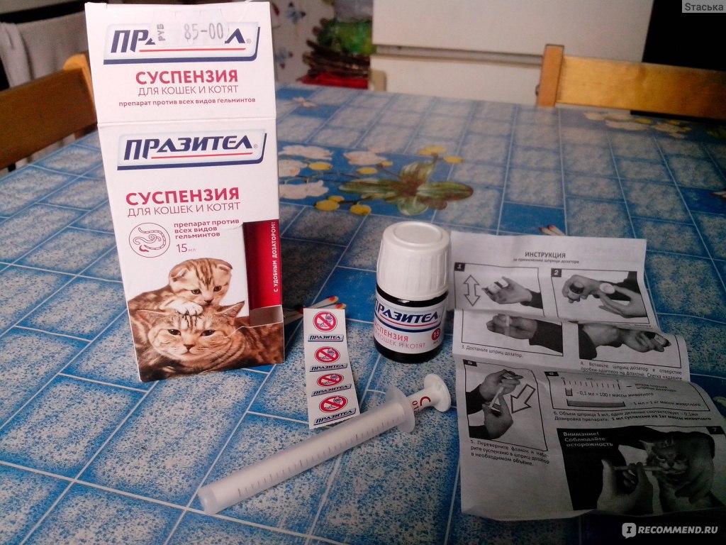 празител для котов в таблетках инструкция