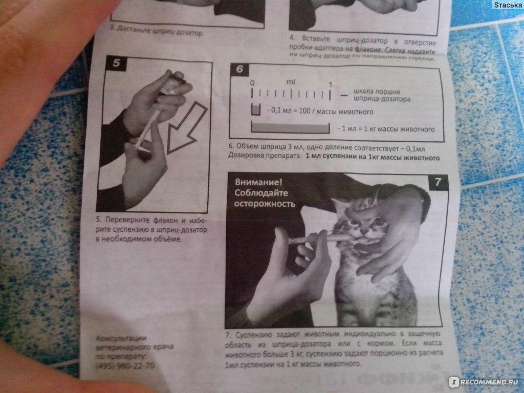 празител суспензия для кошек инструкция