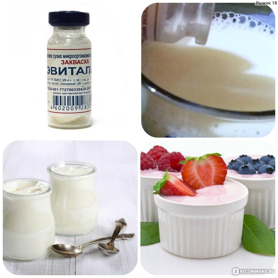Как сделать закваску из йогурта и молока 113