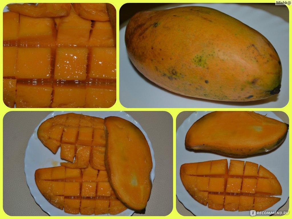 Как стать представителем манго где купить косметику эйвон в рязани
