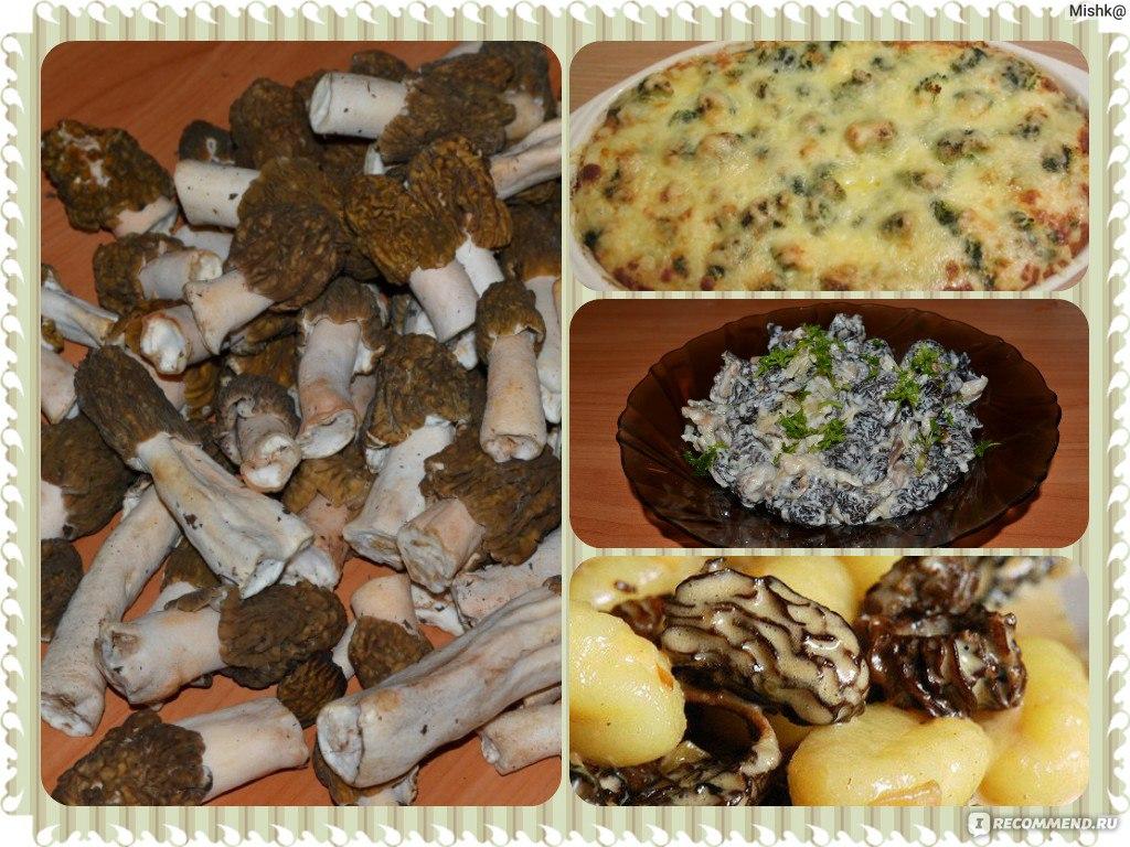 Рецепты из сморчков строчков