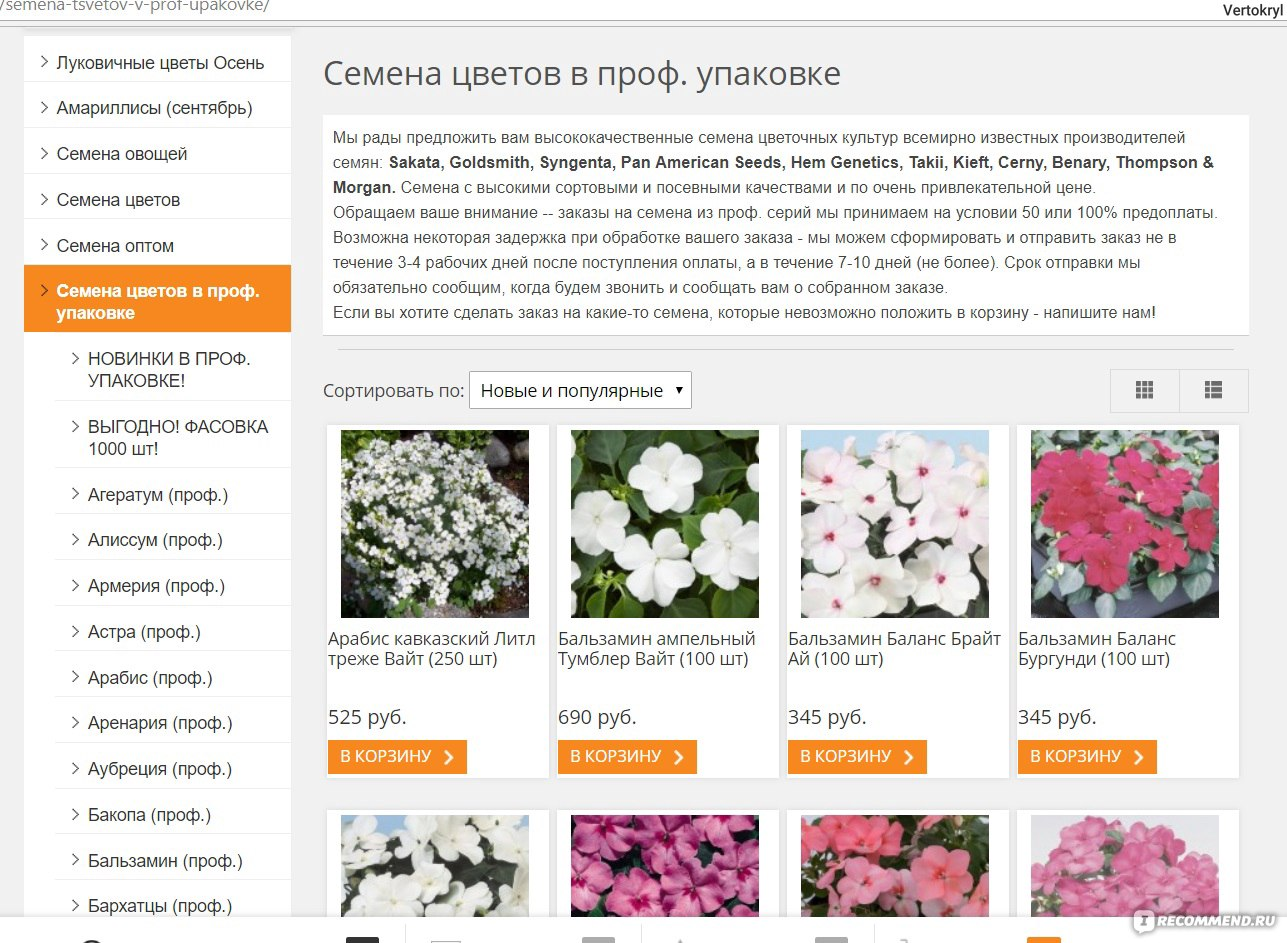 Луковичные цветы интернет магазин сделать заказ продвижение сайта технология