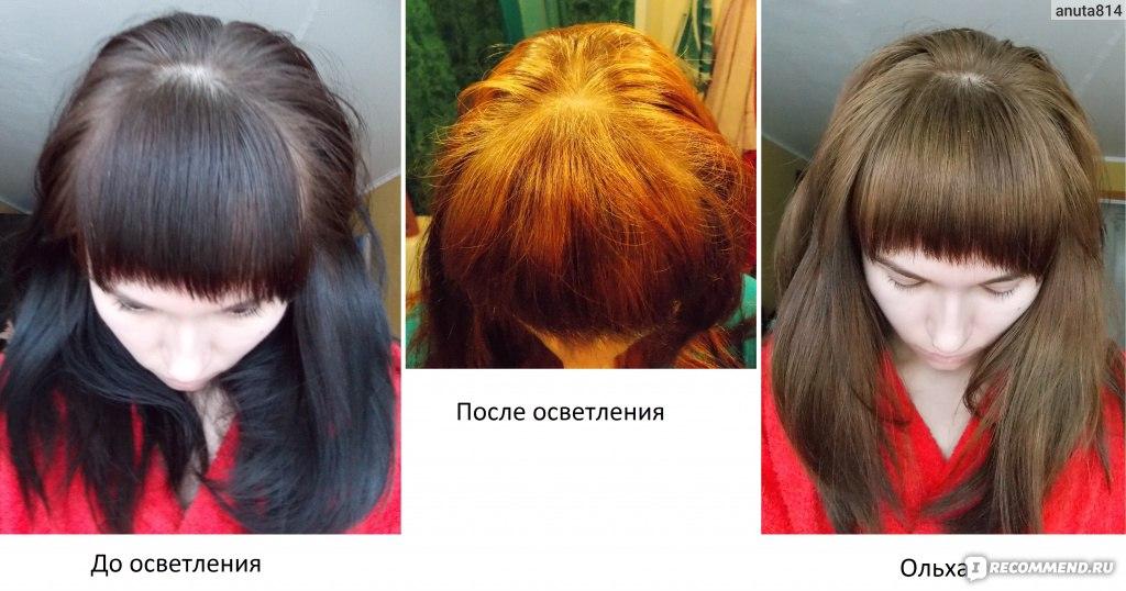 цвет волос ольха гарньер