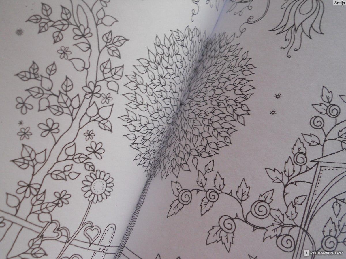 Сказочные лес раскраска
