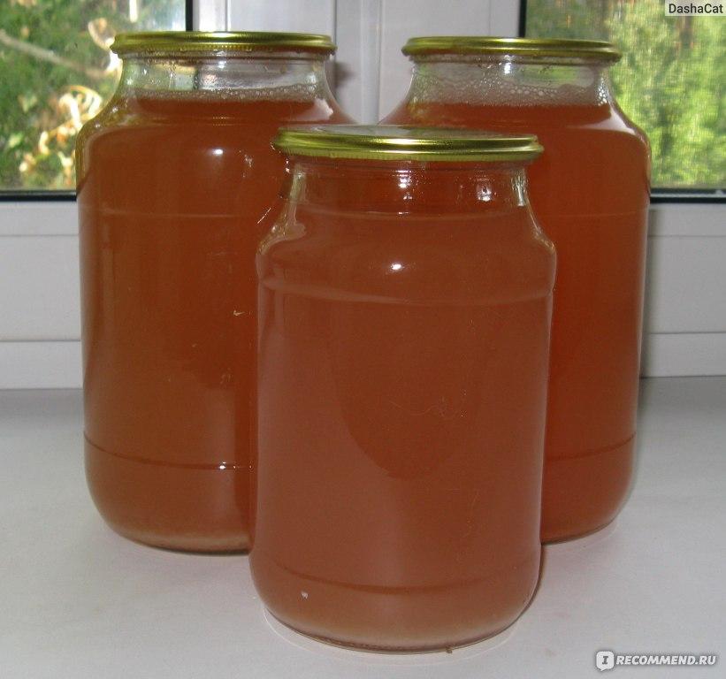 Как сок из яблок в домашних условиях 977