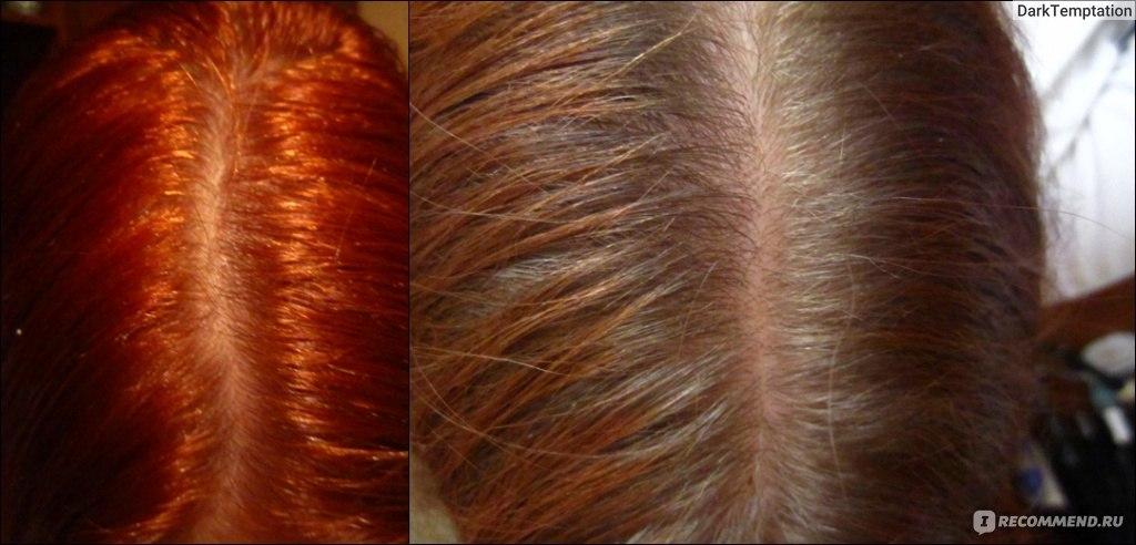 Луковый шампунь для волос отзывы