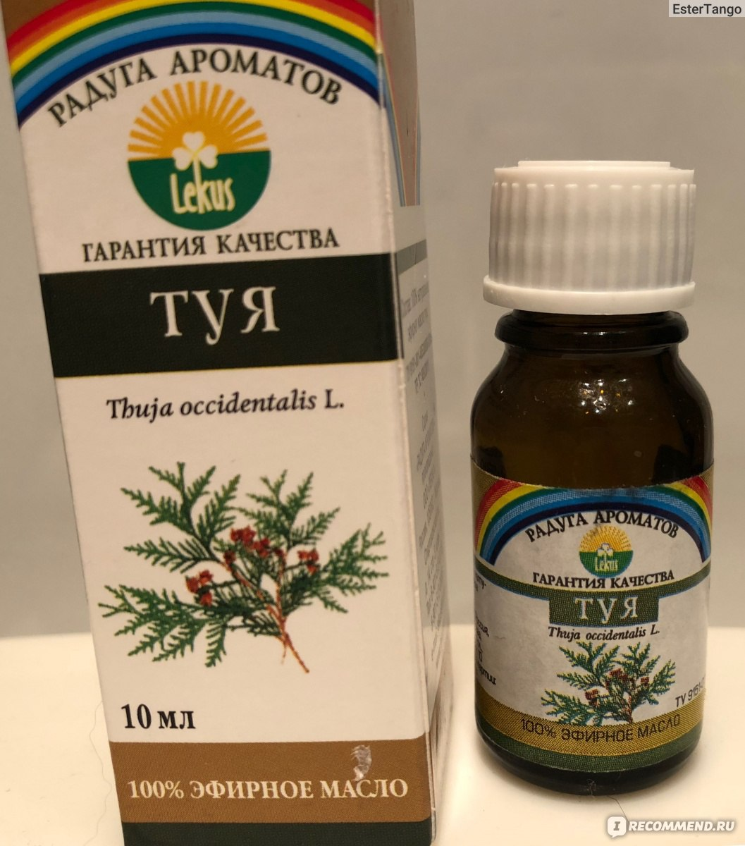 Масло туи при простатите лечения пиявками простатита