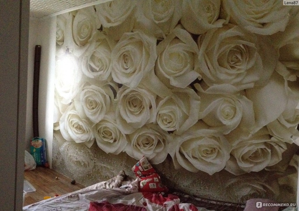 фотообои фото розы