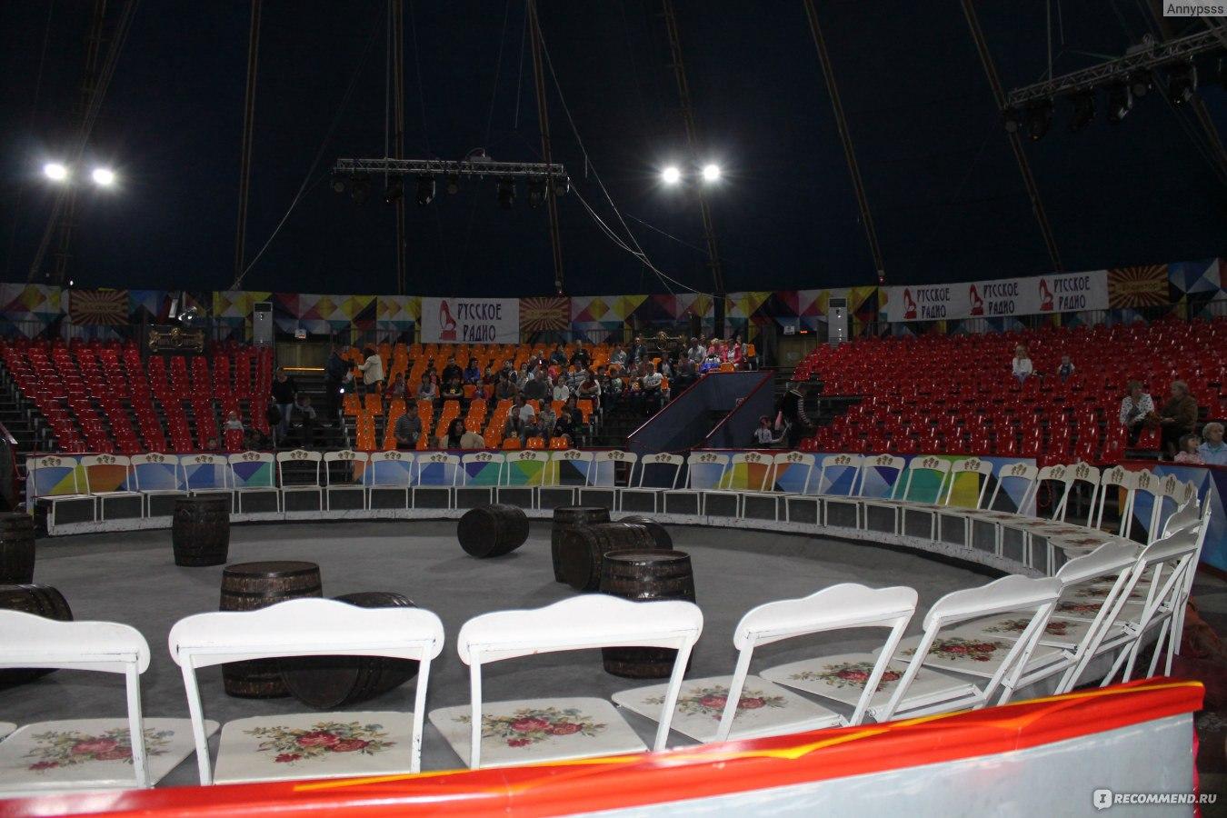 Фото трибун самарского цирка