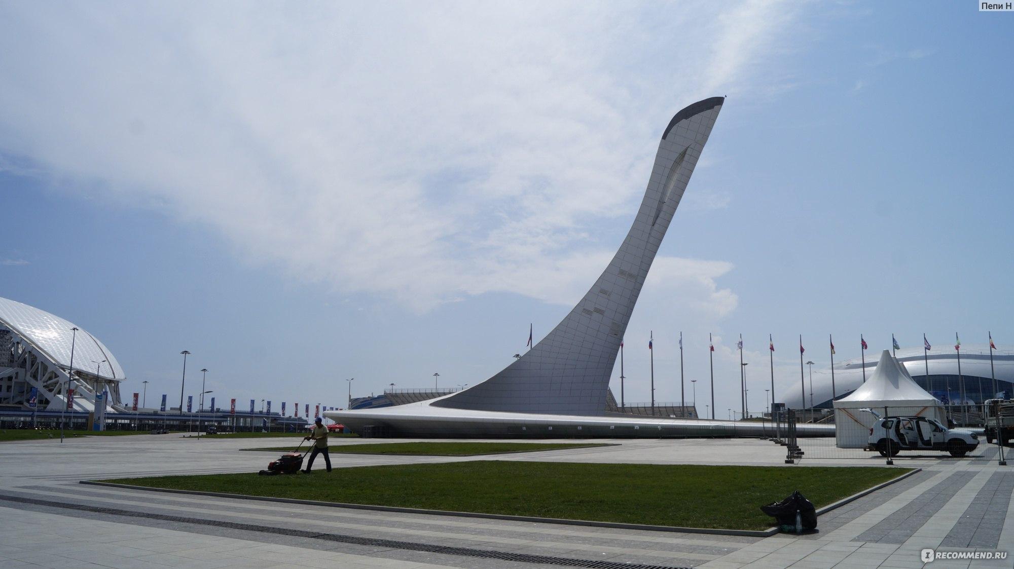 олимпийский парк в сочи фото как добраться тянутся вверх