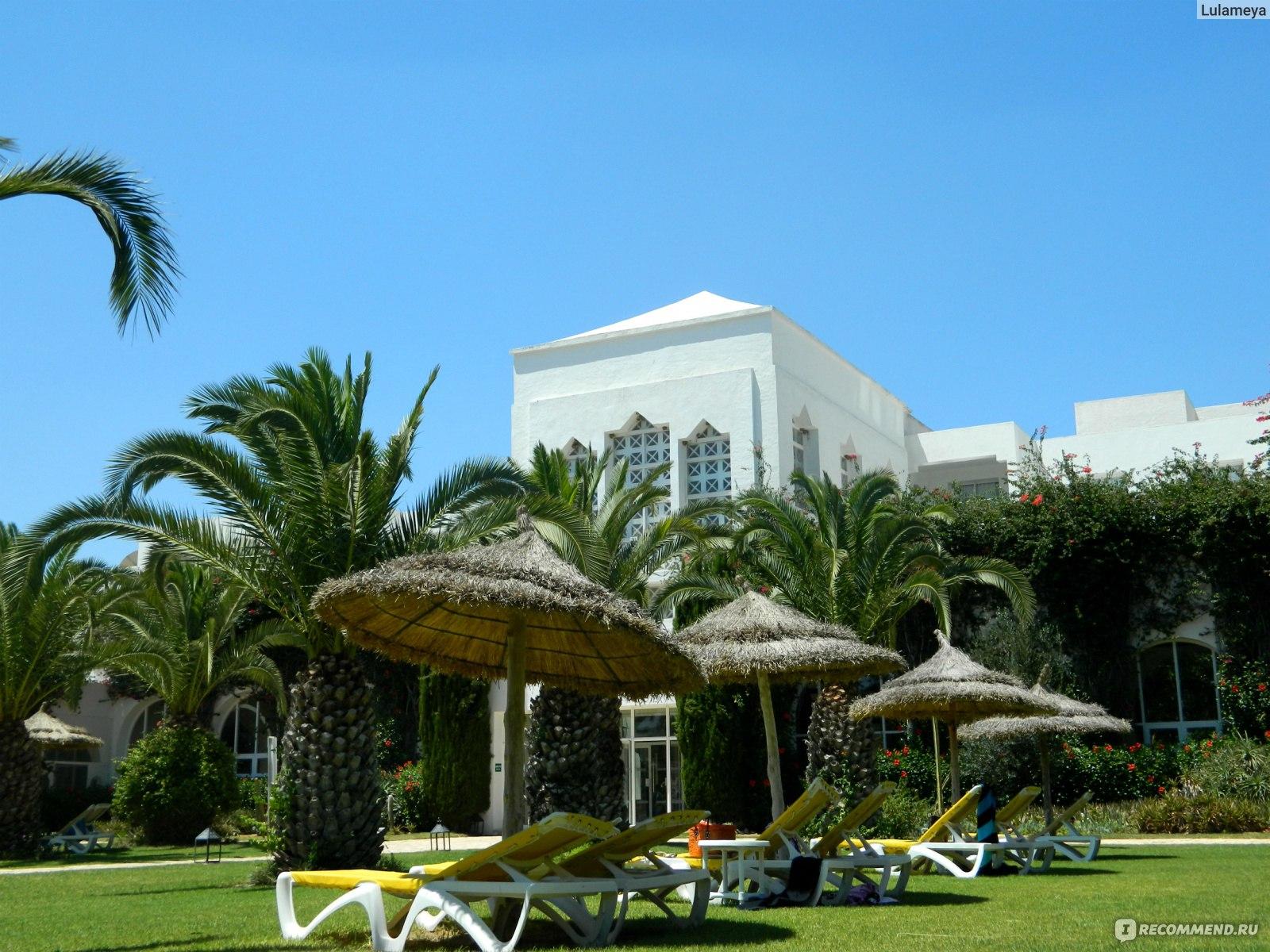 Тунис курорты описание фото отзывы