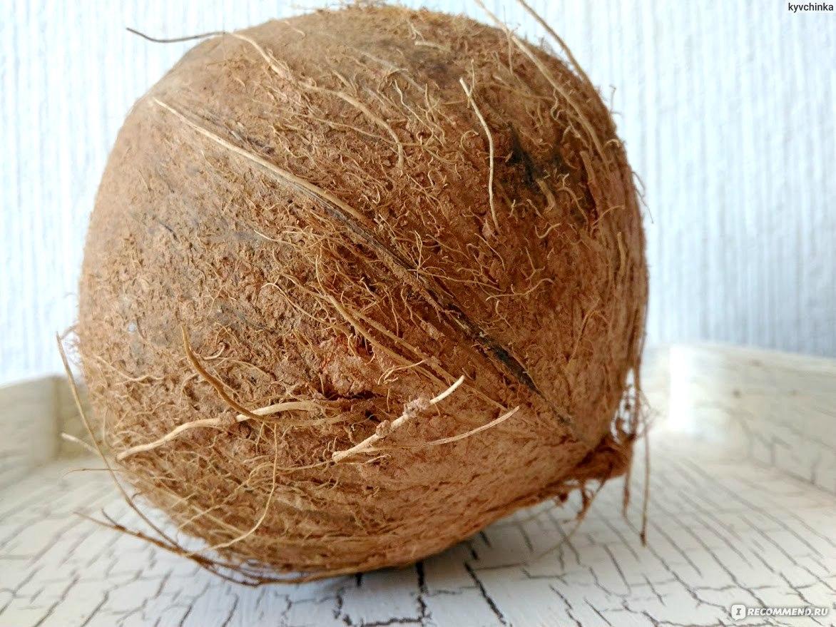 Сделать кокосы своими руками 34