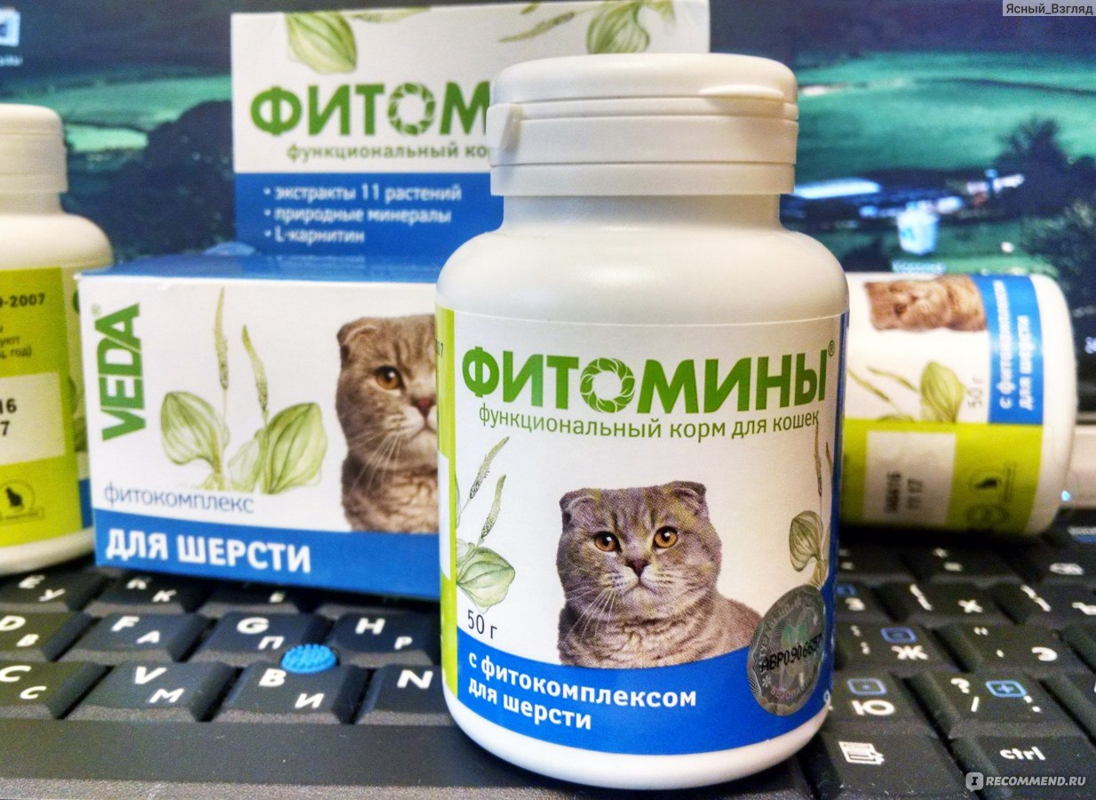 Как давать фитомины коту