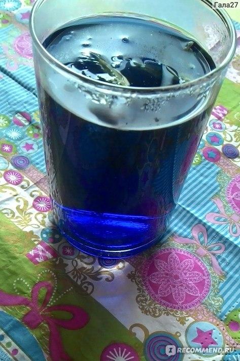 синий чай таиланд описание