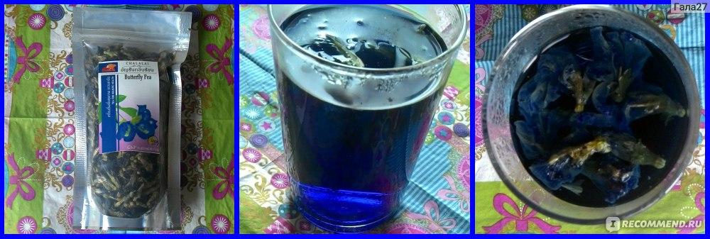 синий чай для волос отзывы