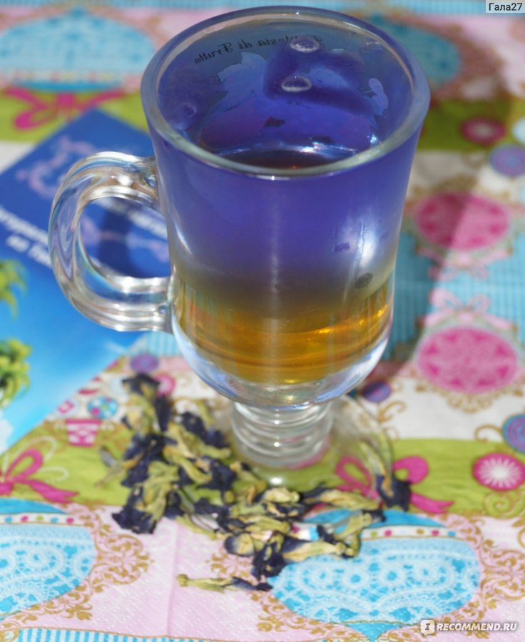 синий чай таиланд фото