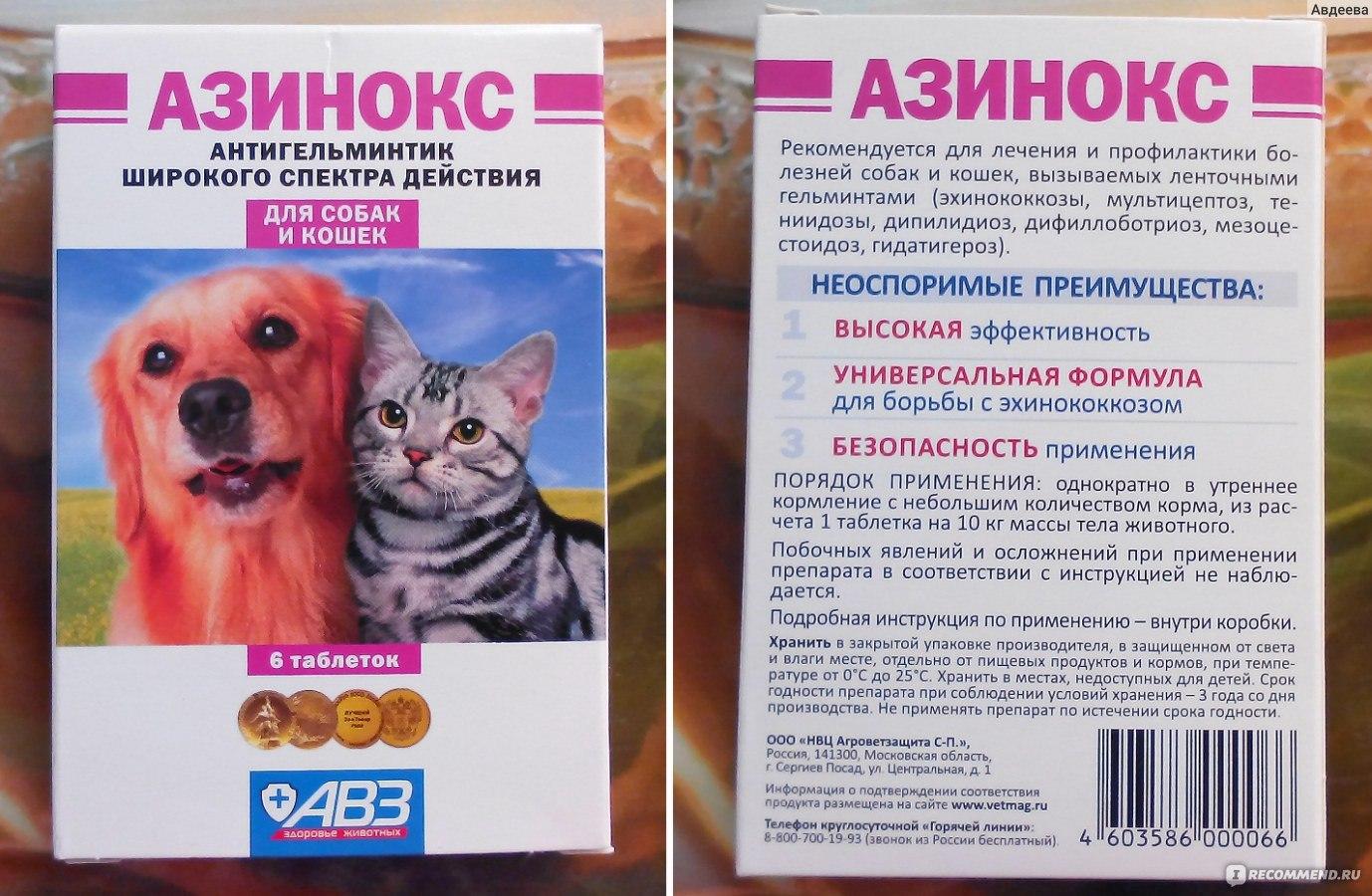 Чем лечат собаку от глистов в домашних условиях