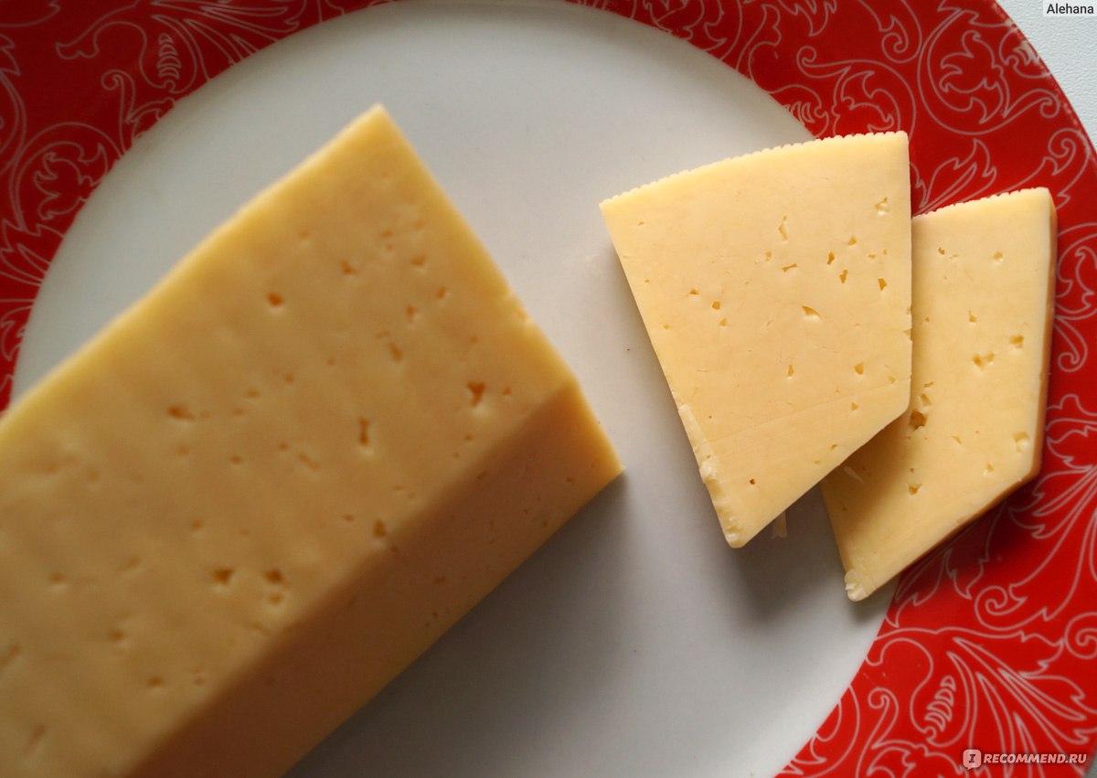 Как сделать российский сыр фото 610
