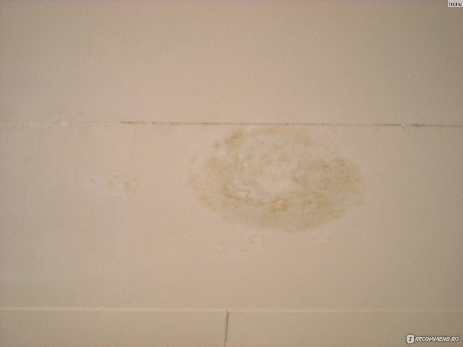 Как белизной вывести пятна на потолке после фото