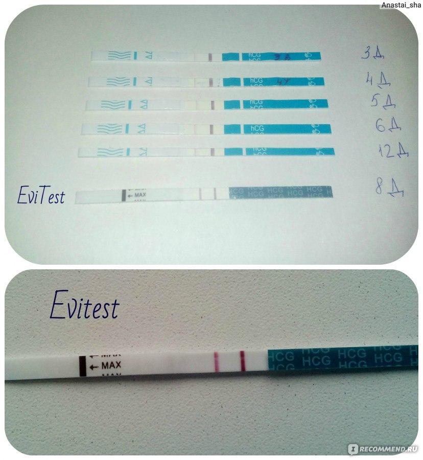 Состав теста на беременность