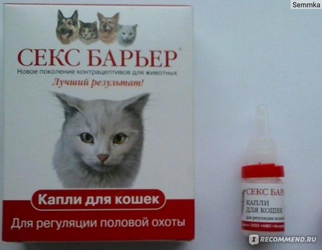 Секс барьер для котов подойдет