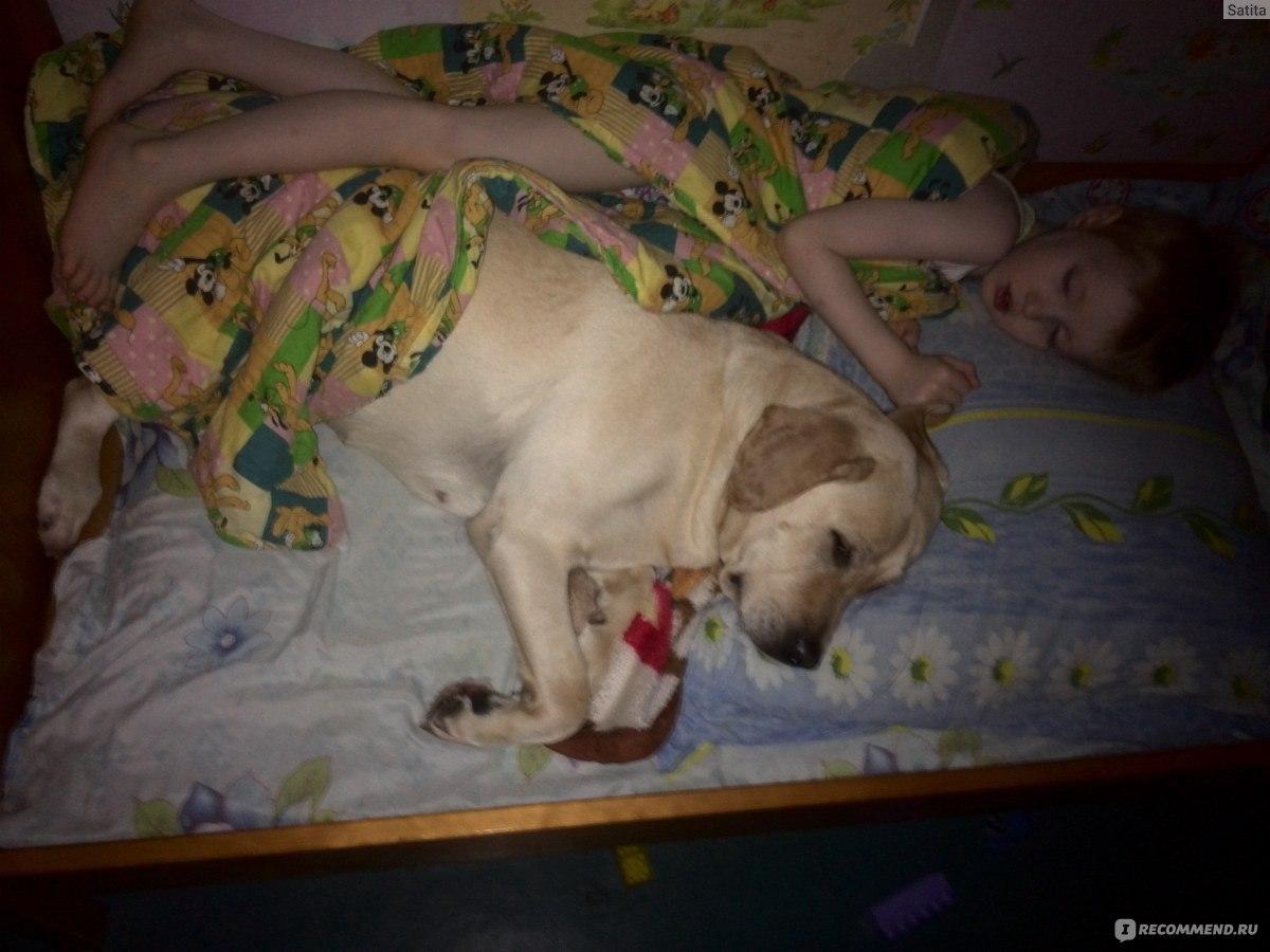 Спать вместе или порознь