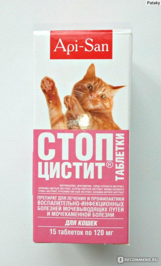 Диета Кошки При Цистите.