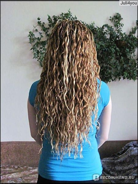 Curly esta en peligro