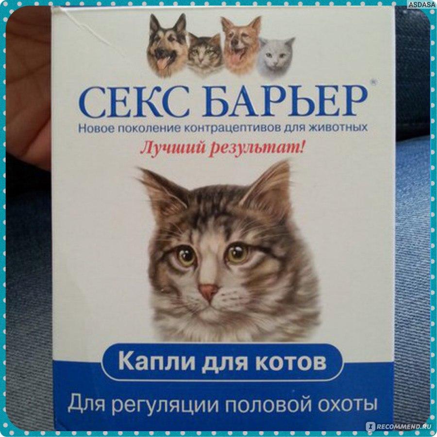 Дозировка капель секс барьер для кошек