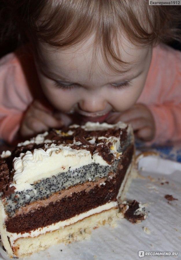 торт мишутка палыча рецепт