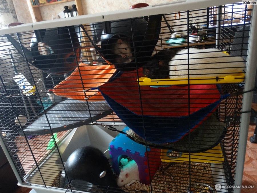 Как самому сделать клетку для крысы 126