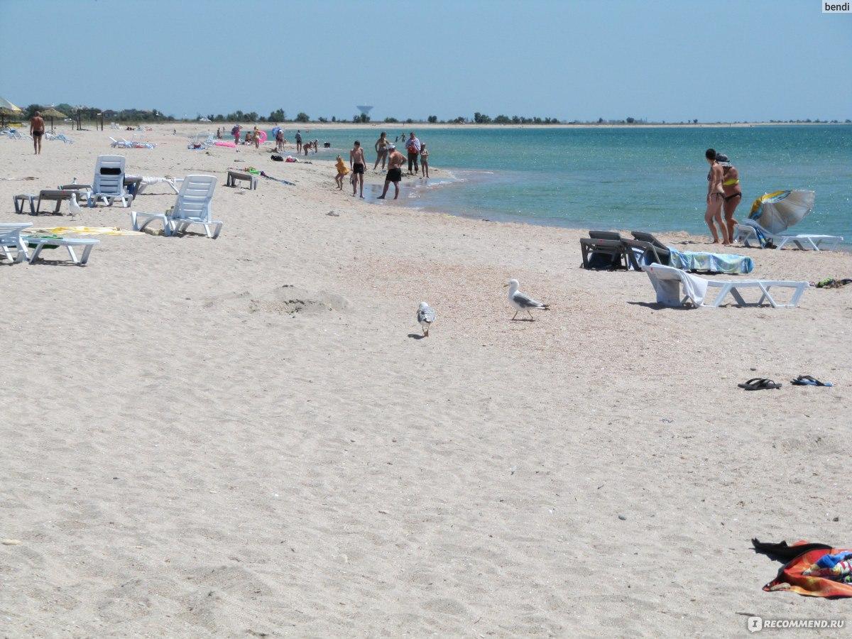 Пляжи в штормовом крым фото