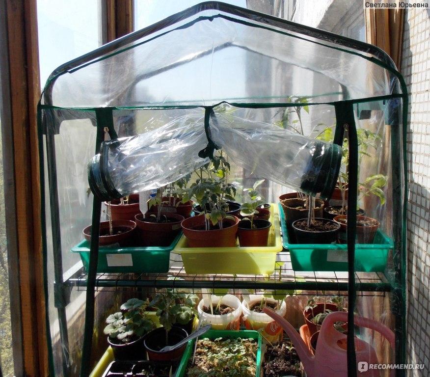 """Парник планета-сад для балкона - """"моя новая игрушка"""" отзывы ."""