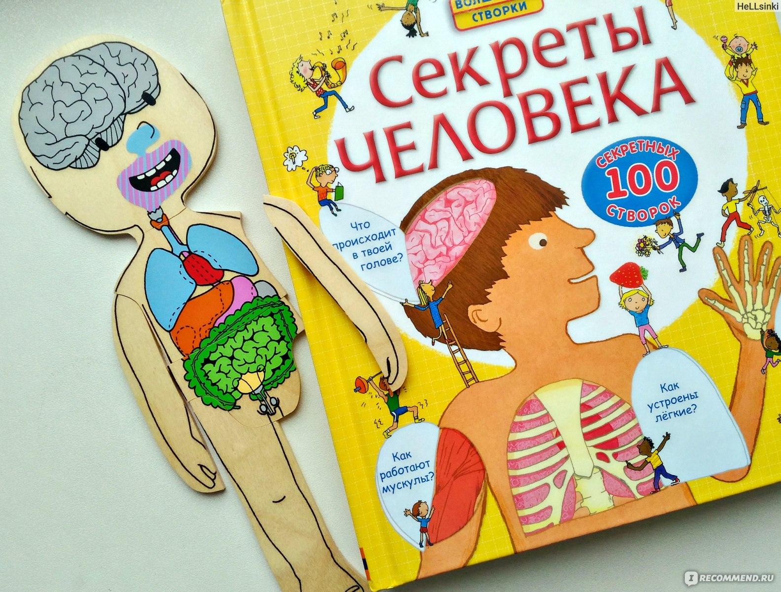 Занимательная анатомия человека картинки