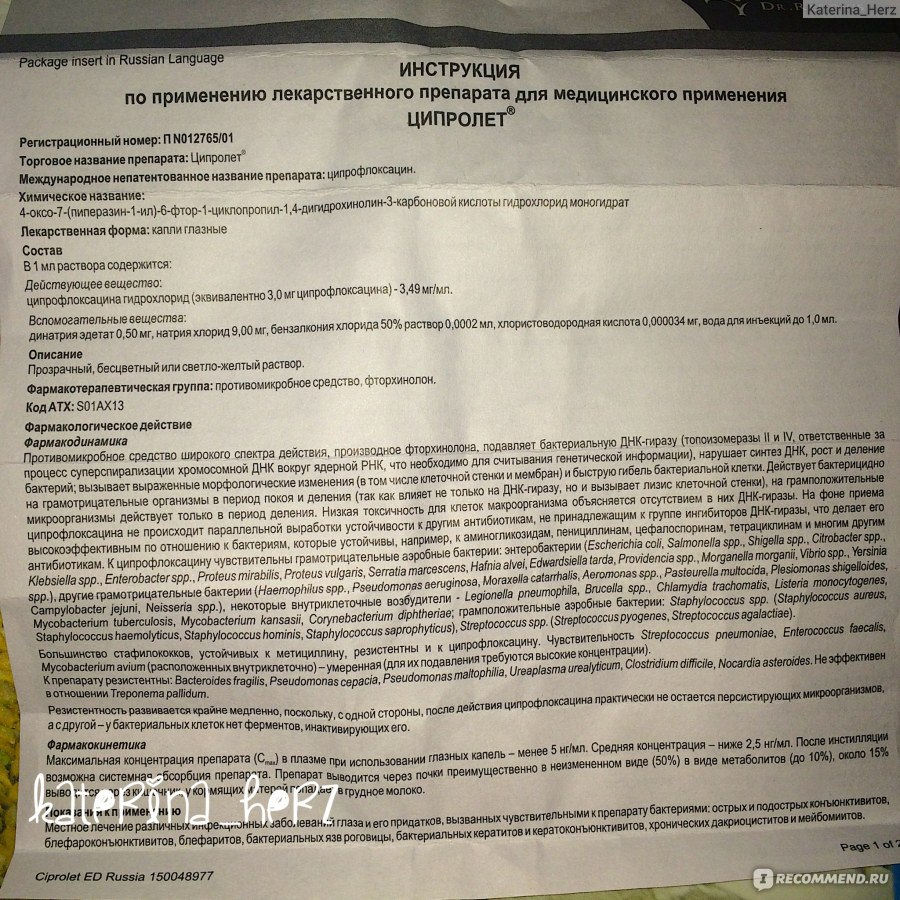Ciprofloxacin Mouse Pharmacokinetics