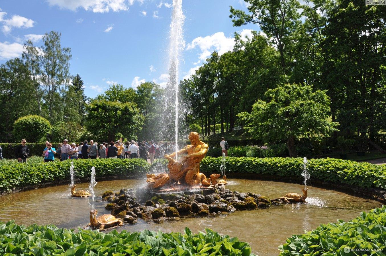 писки и фонтан