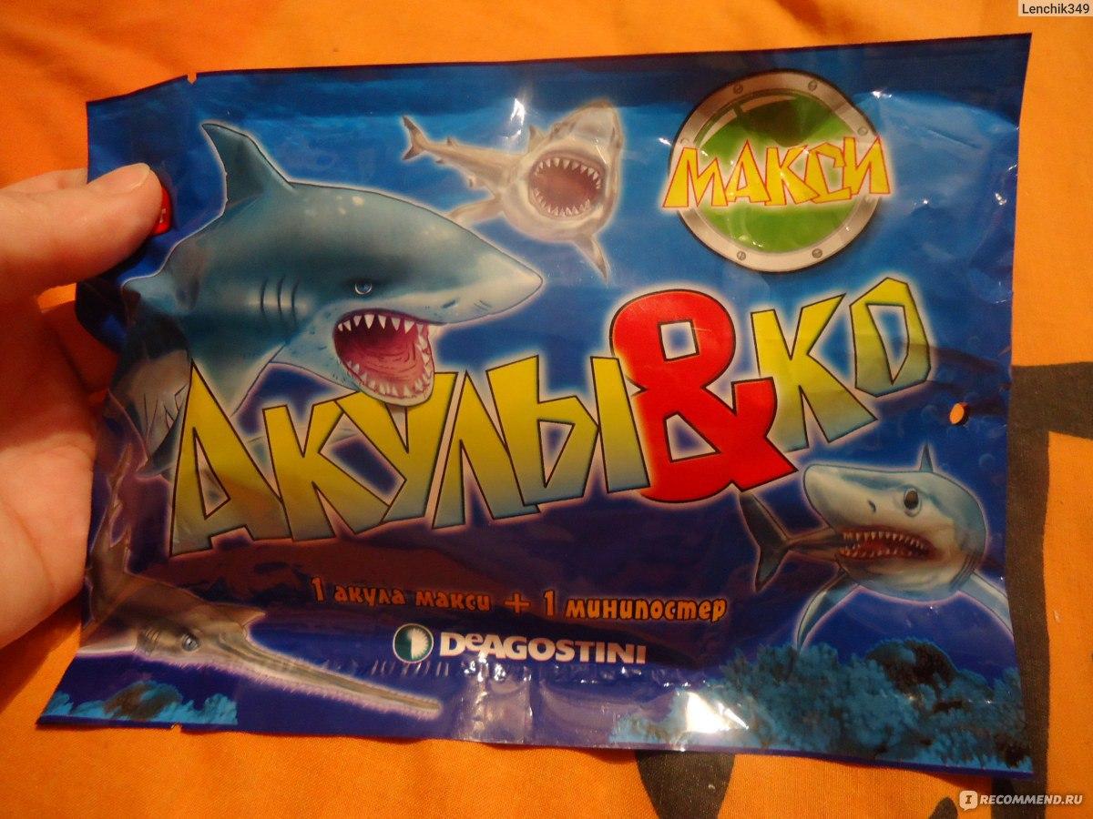 Картинки акул и ко макси