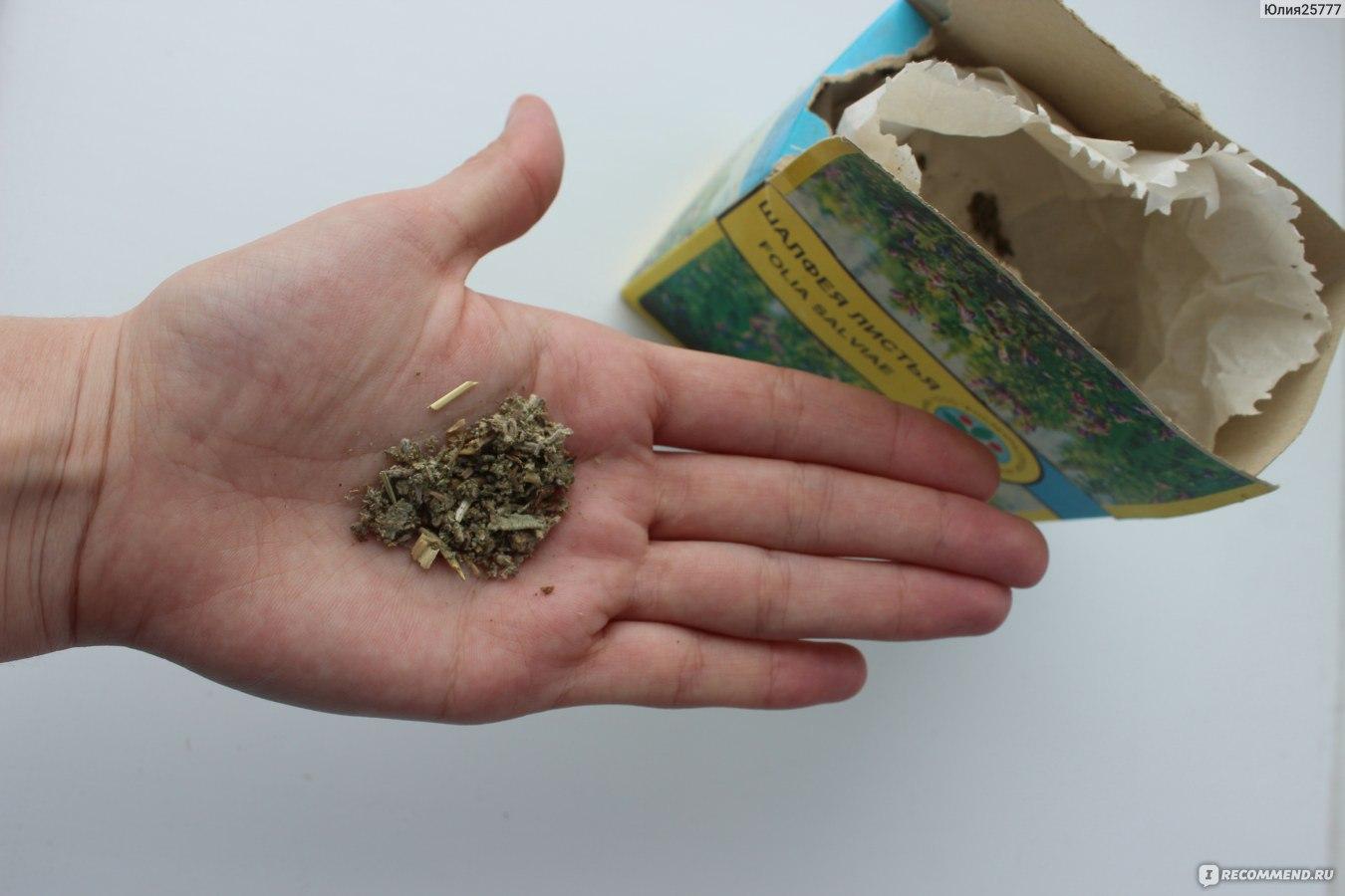 аллергия от травы фото