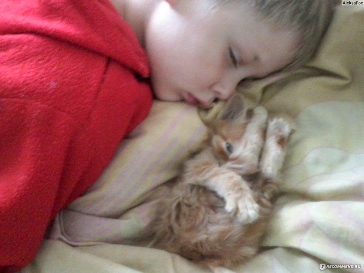 sestra-spala-brat-trahnul