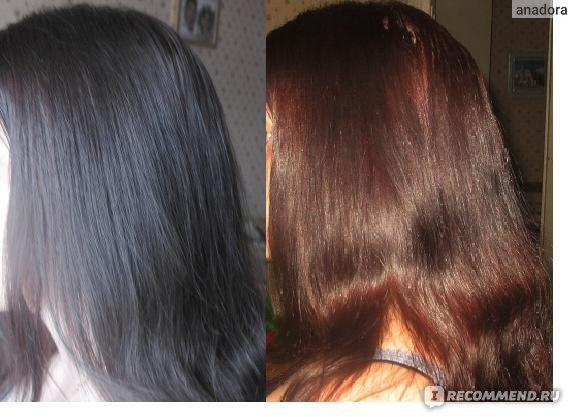 Цвет волос золотистый грильяж фото