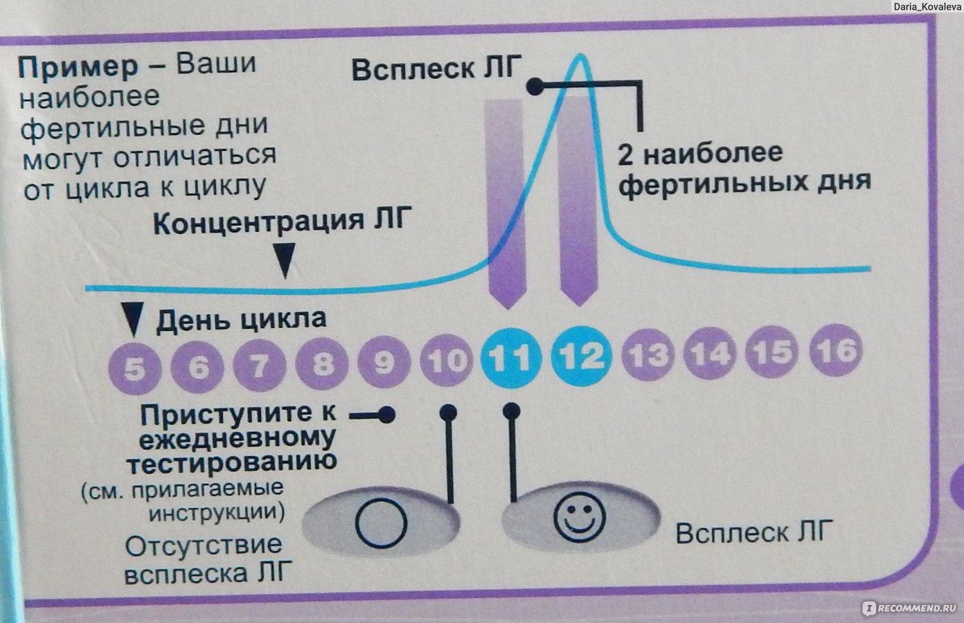 Мультифолликулярные яичники и отсутствие овуляции как забеременеть