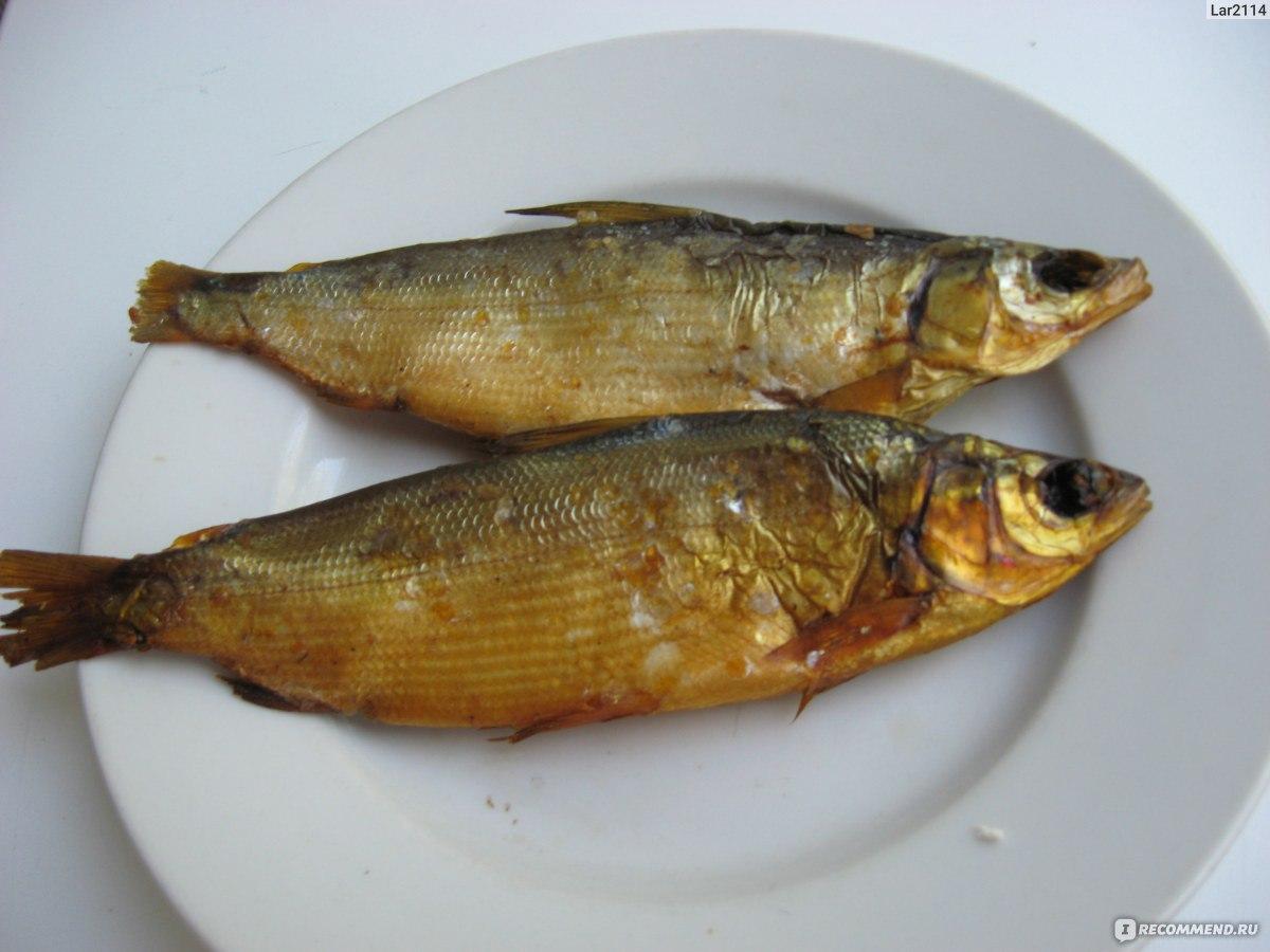 Рыба сырок копченая отзывы #3