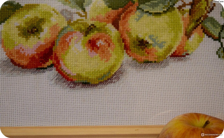 схема крестиком ребенок в яблоке