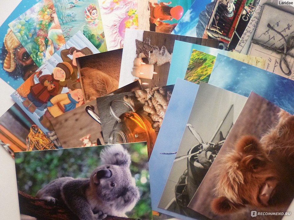Днем, ориана кард магазин почтовых открыток