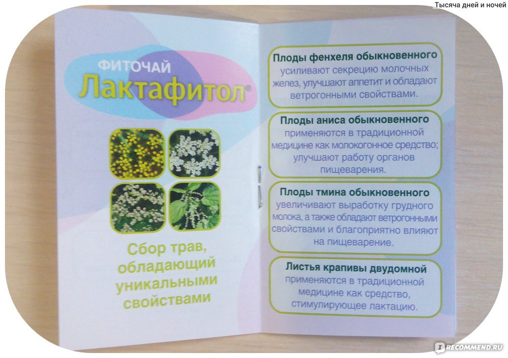 чай для лактации лактафитол отзывы