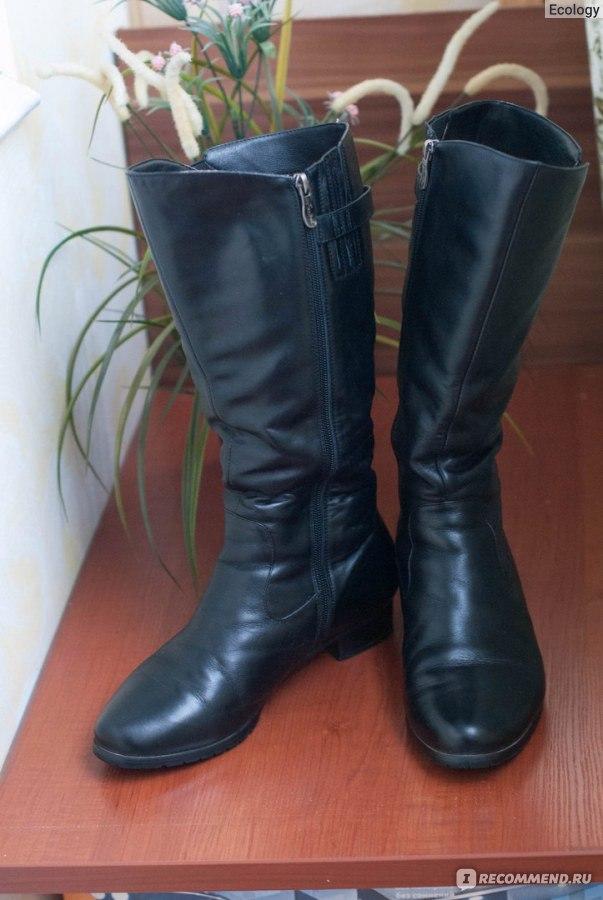 8c8f6af96 Сапоги зимние Ascalini на полную ногу 5332 чер кож сап евро - «Если ...