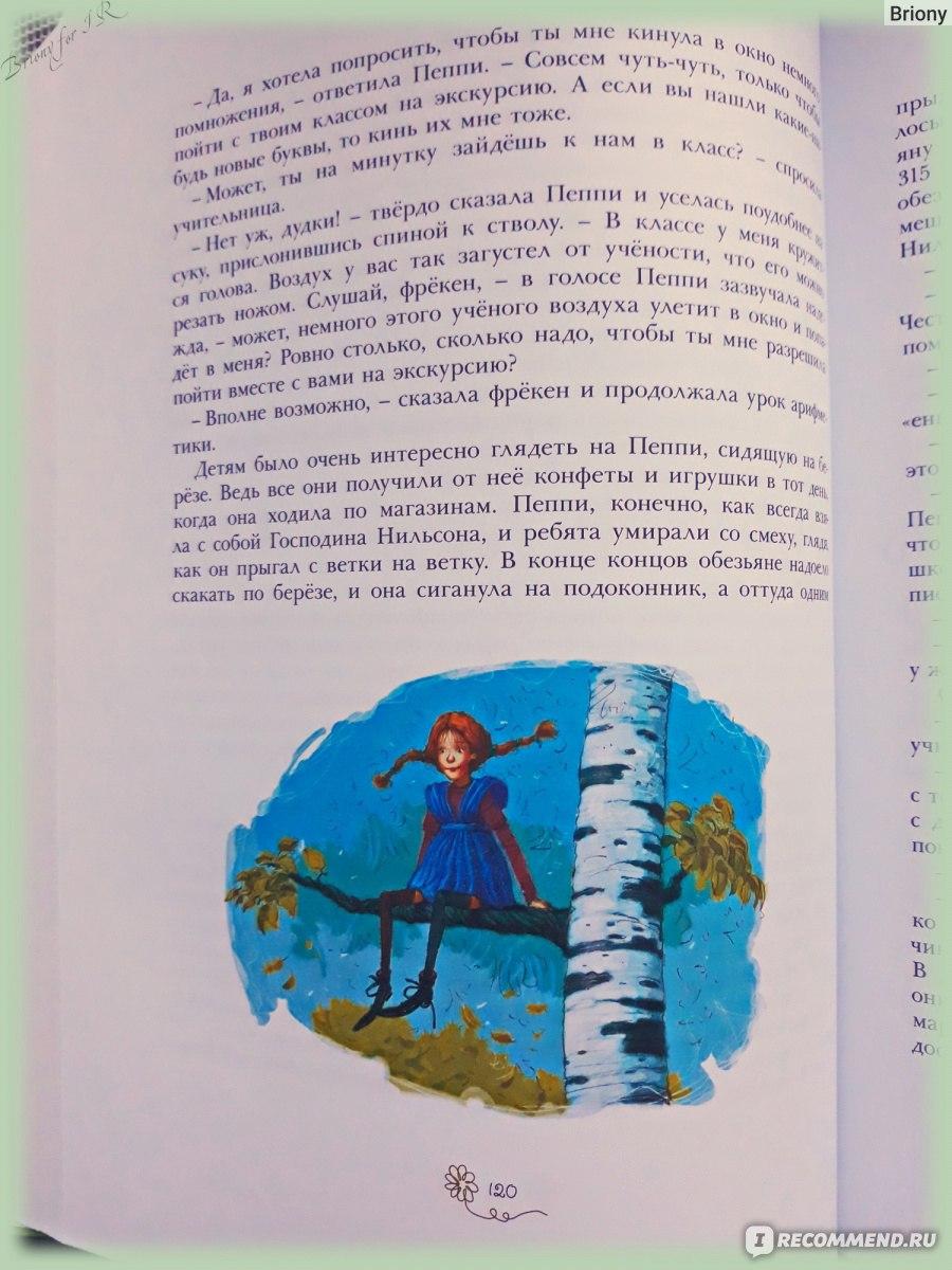 Эссе по книге пеппи длинный чулок 4035