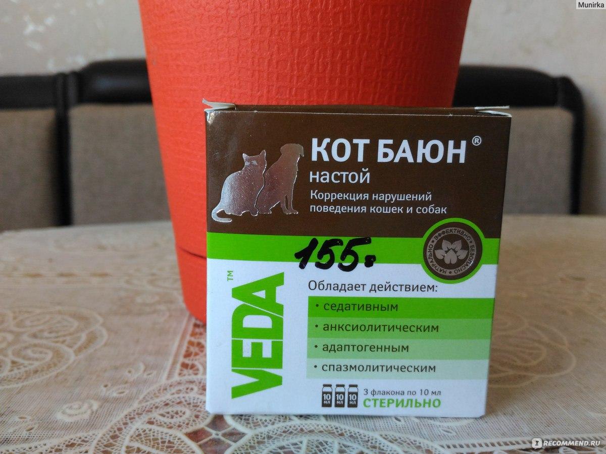 При стрессе успокоительное для котов